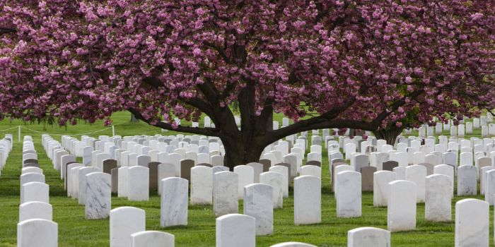visiting cemetry on memorial day