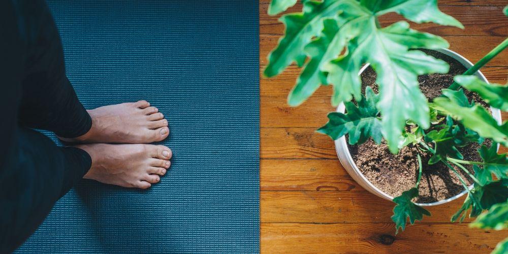 shilpa's yoga classes